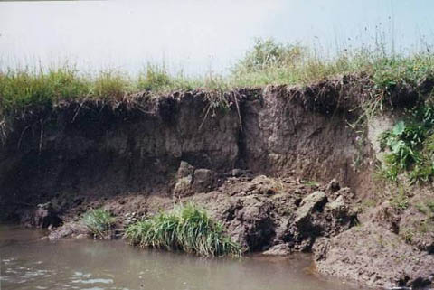 Lake Erosion Can Be Controlled